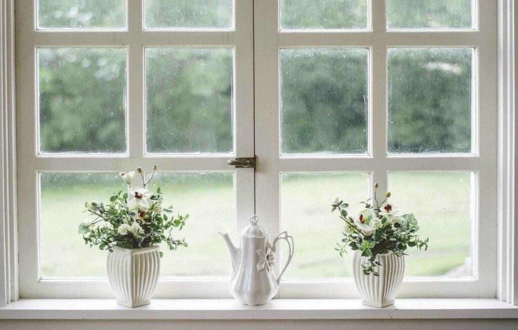 Finestre con piante