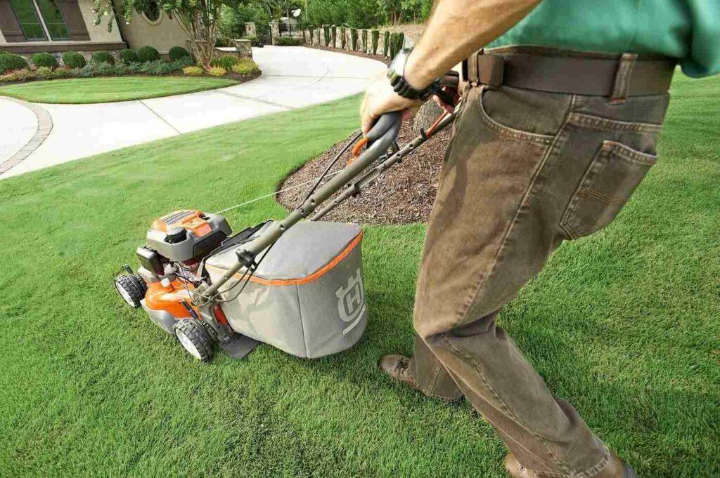 Man pushing small lawn mower