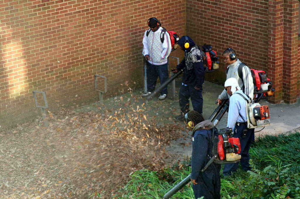 Grupo de cinco hombres usando sopladores de hojas